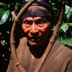 "From Our Pages: ""Agony and Ecstasy in the Amazon"": on snuff, ayahuasca, and manhood in Peru. By Glenn H. Shepard, Jr."