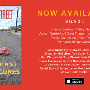 "It's here!! Our new issue, ""Small Things, Partial Cures,"" hits the street and the web June 13. Sample some of the contents here now."