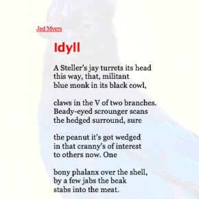 "Share This Poem: ""Idyll,"" by Jed Myers."
